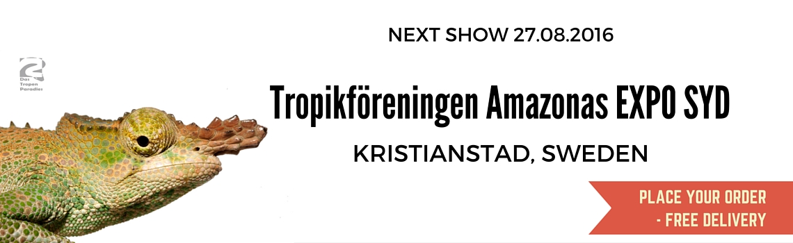 Show-Kristianstad1