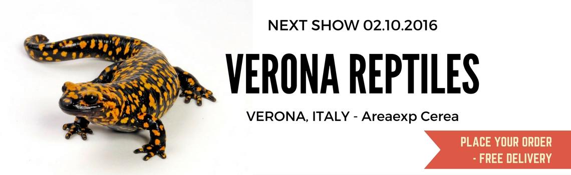 Show-Verona