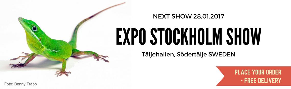 Show-Stockholm-soedertaelje