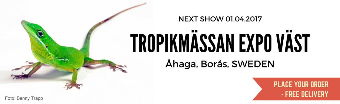 tropikmassan-Boras-Sweden