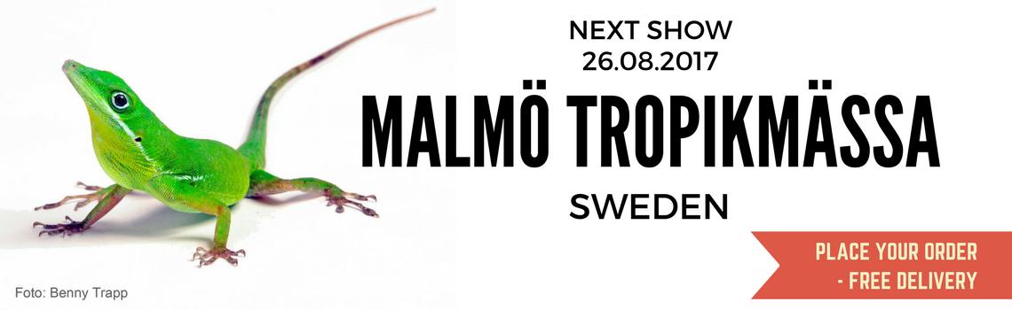 Show-Malmoe-Sweden