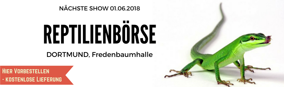 Reptilienboerse-Dortmund